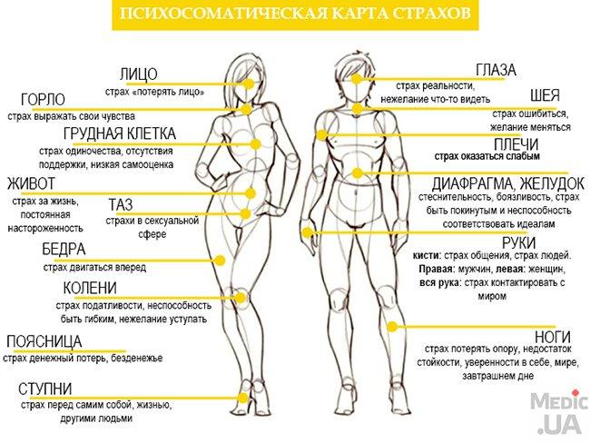 Причины болезней — справочник